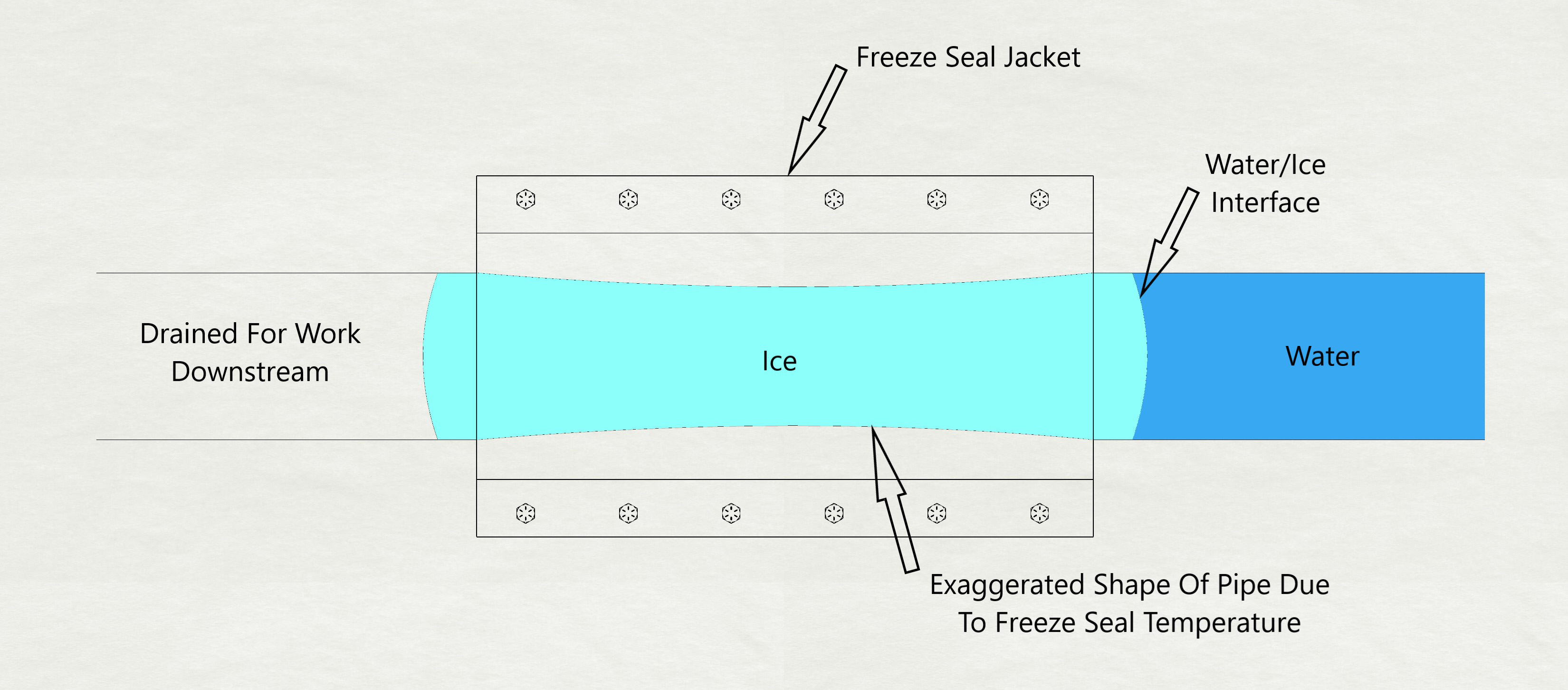 Freeze Seal Jacket