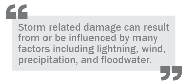 """Storm related damage can result from or be influenced by many factors including lightning, wine, precipitation, and floodwater."""